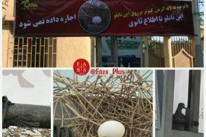 حقوق حیوانات در ایران